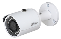 Dahua N41BD22 IP Camera